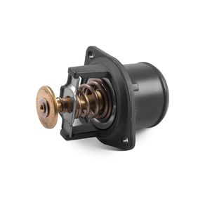 Valvula-termostatica_20871546